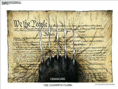 obamacareconst.jpg